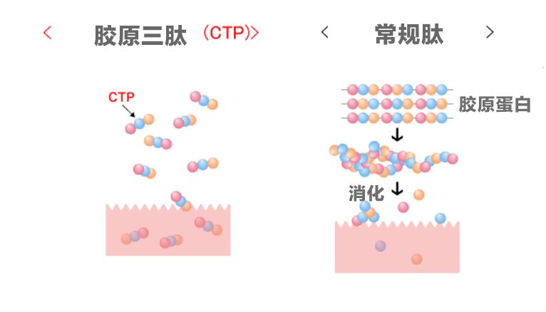 伊的家胶原三肽护肤效果分析