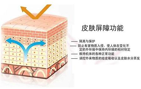 伊的家专业护肤达人解答:肌肤屏障受损怎么办?插图(1)