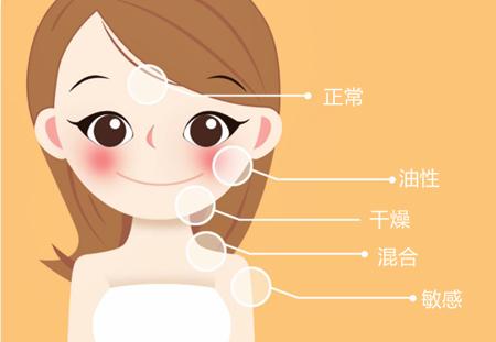辨别肤质的最快2种方法插图